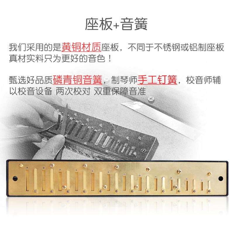 天鹅口琴初学者学生成人儿童24孔专业演奏级复音c调入门自学乐器 (¥59)