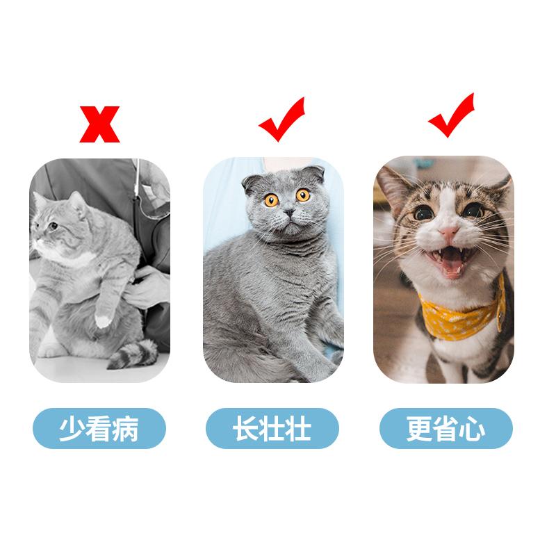 小满全价天然粮增肥发腮奶糕粮幼猫成猫猫粮1.5kg包邮通用型有鱼优惠券