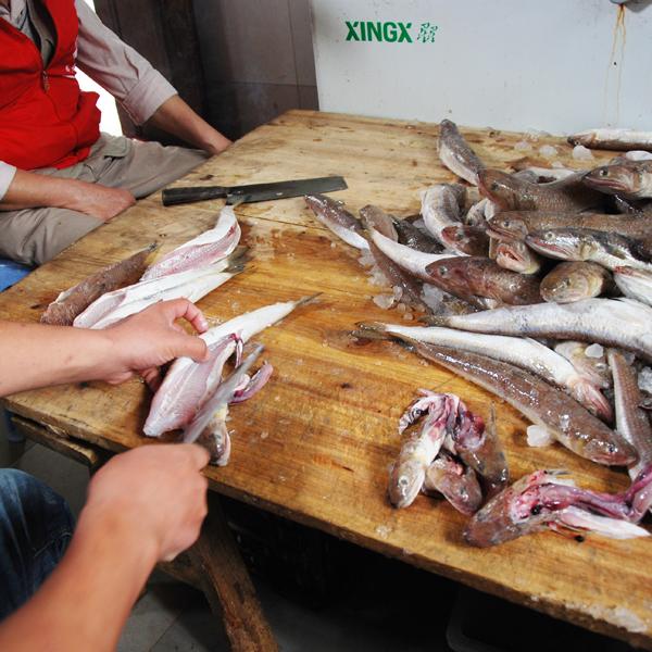 老广的味道 蒂蒂香手工手拍汕头达濠鱼丸 海鲜特产 新鲜鱼丸鱼蛋