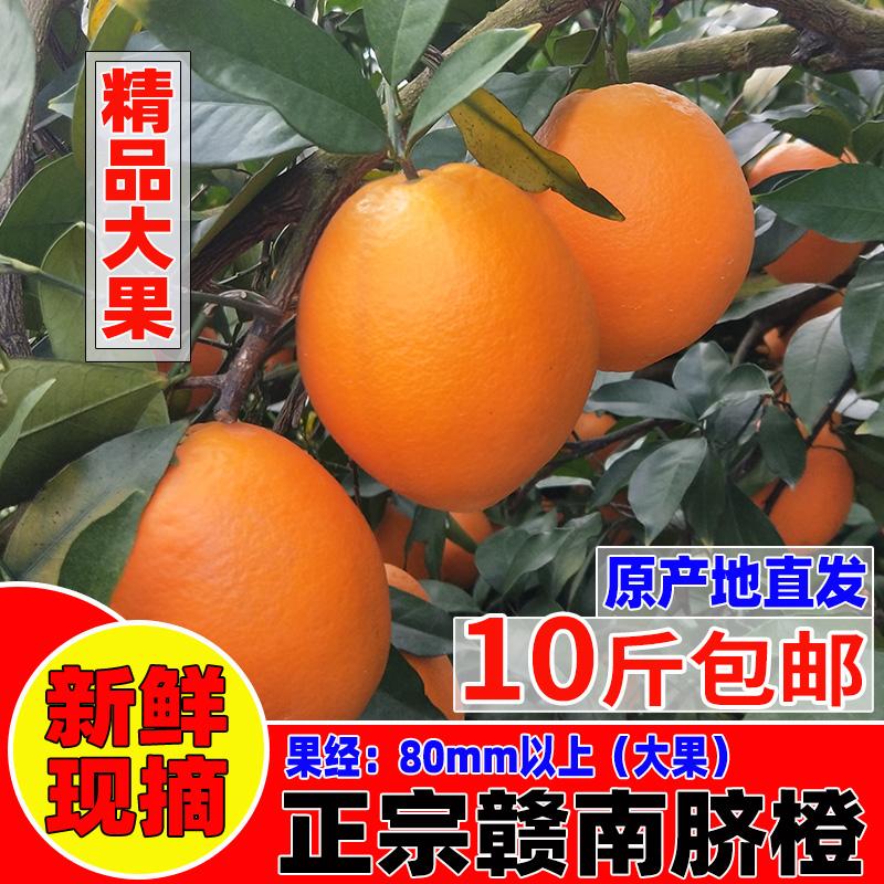 正宗赣南脐橙10斤装江西赣州寻乌甜橙子精品大果新鲜水果手剥橙20