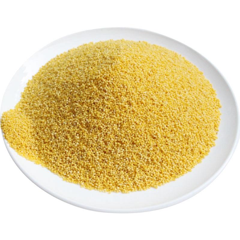2019小黄米新米黄小米250g食用小米粮食煮粥吃的小米五谷杂粮小米