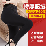 US special three-meter thick warm pants female camel thick gauze leggings big yards winter outer wear trousers northeast
