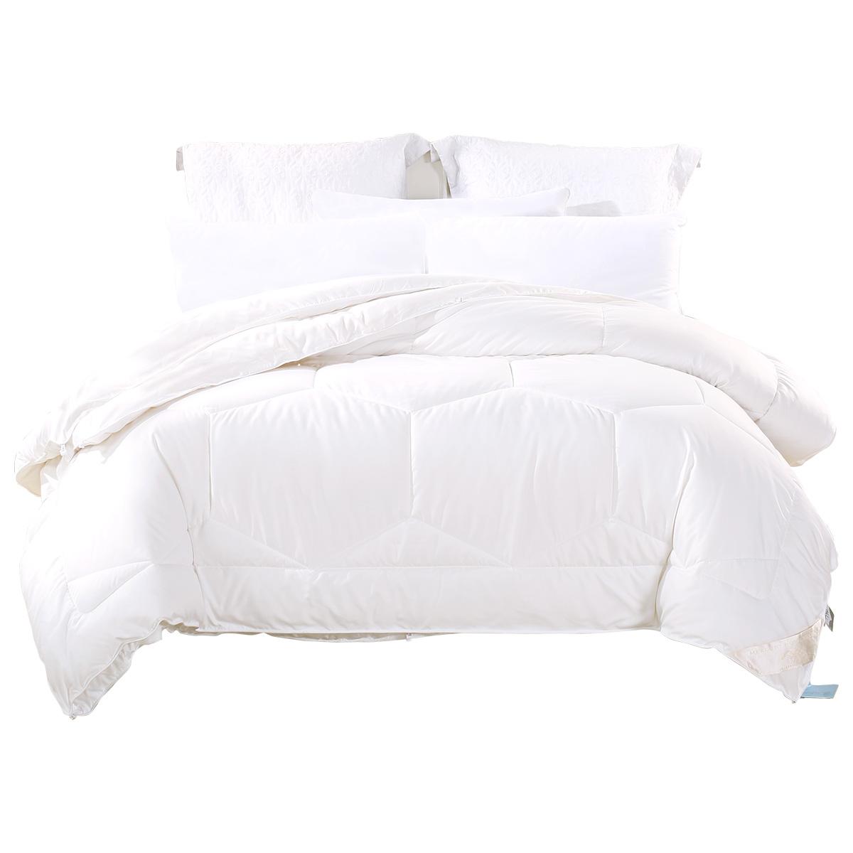 水星家纺加厚保暖被子大豆纤维冬季棉被芯春秋被单人双人10斤冬被