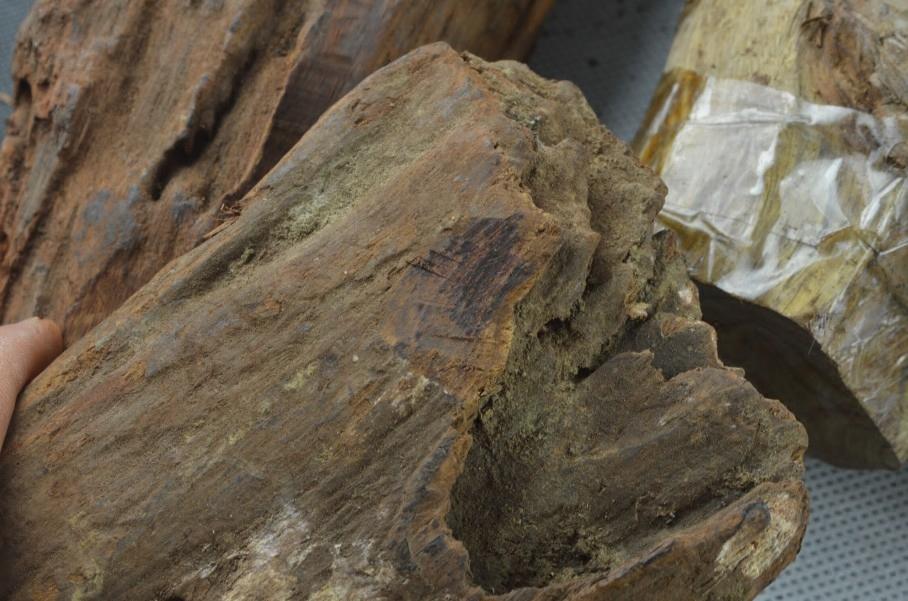 越南黄花梨木雕木头原木风化越南黄花梨老木高油老料DIY材料