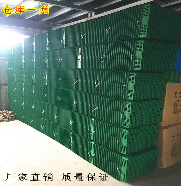 塑料水果筐子蔬菜盘子绿色熟胶水果货架种植托盘托盘宠物盒平底