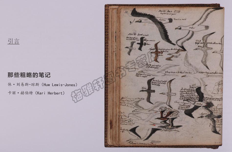 余幅精美图片大量手绘科普读物探险史极地户外探险珠峰非洲历险极限挑战世界自然科学科普读物 400 艺术 笔记本探索 正版探险家