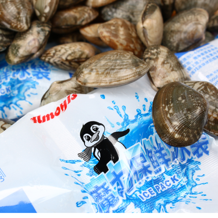 amoyls 魔力科技航空冰袋海鲜水果食品医药保鲜冷藏干冰袋 包邮