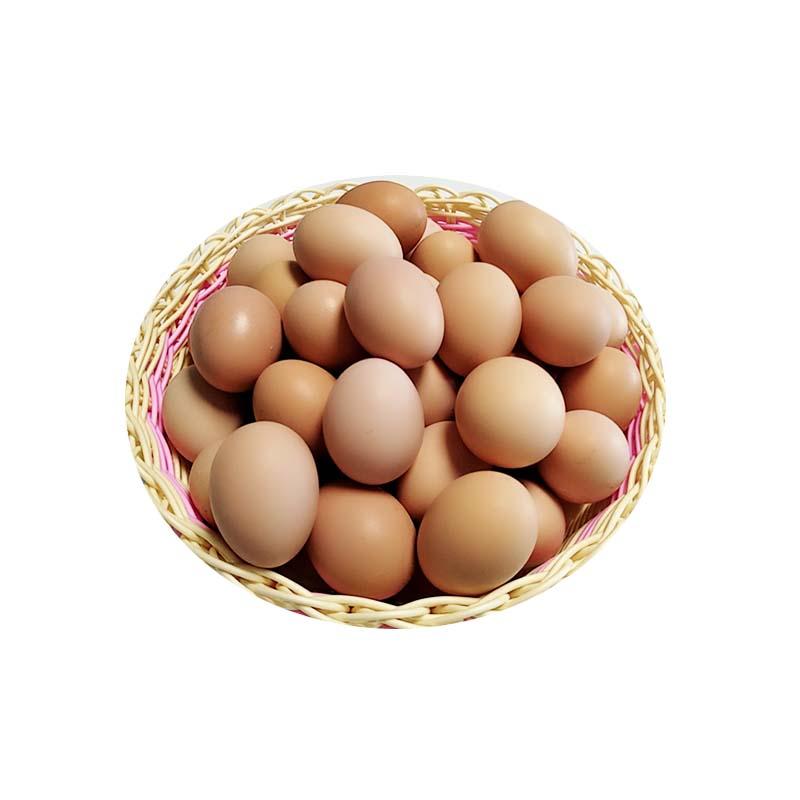 50枚包邮九华山山林放养土鸡蛋农家散养本鸡蛋草鸡蛋当天新鲜蛋