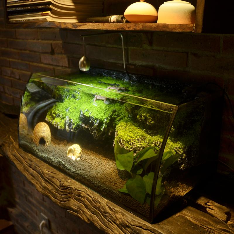 小鱼缸迷你创意桌面客厅家用透明玻璃金鱼热带鱼鱼缸乌龟缸水陆缸