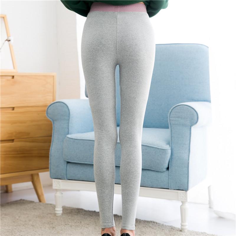 打底裤女外穿秋款灰色高腰显瘦韩版纯棉内穿秋裤小猫2019新款裤子