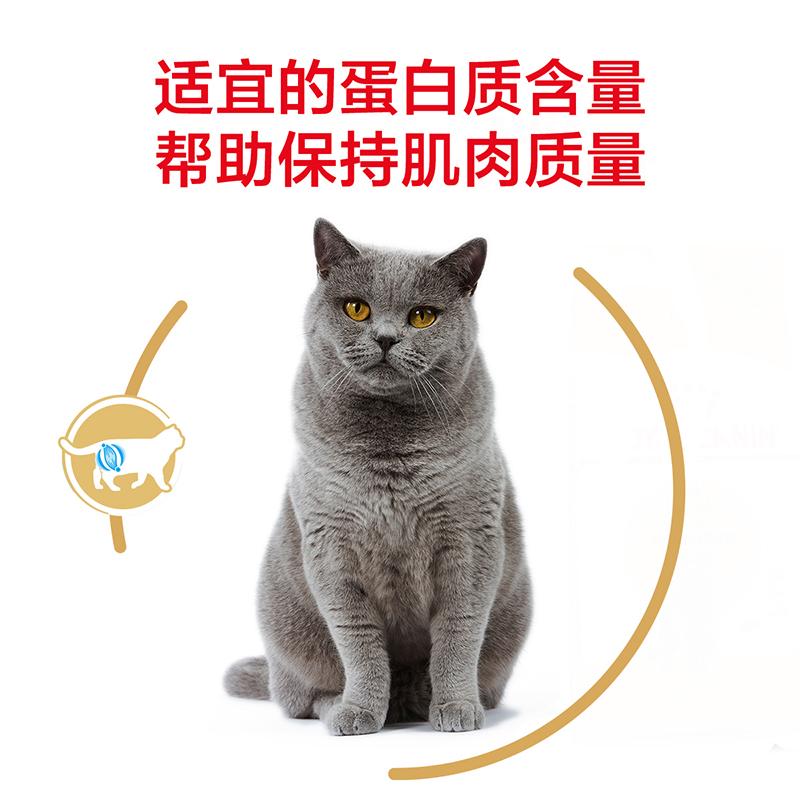 皇家猫粮 英短成猫粮BS34 2KG 英国短毛<a href=