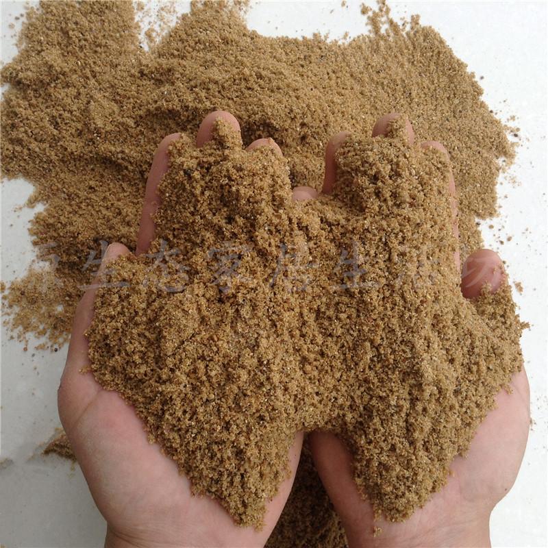 黄沙河沙水泥沙子沙土黑水泥白水泥砂浆用沙子散装5斤包邮