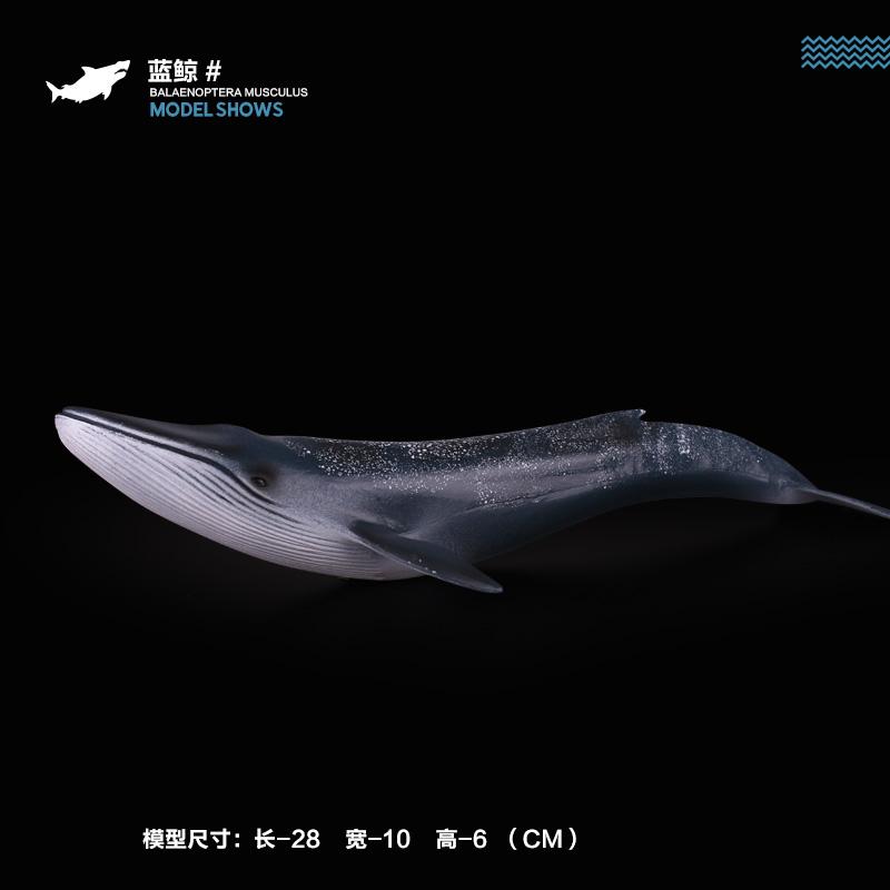 仿真海洋生物动物模型玩具大白鲨鱼北极熊虎鲸海龟海豚企鹅魔鬼鱼