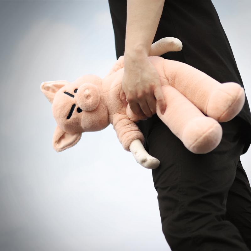陪伴玩偶毛绒公仔创意礼物潮玩限量礼盒装 奋斗系列猪偶 问童子