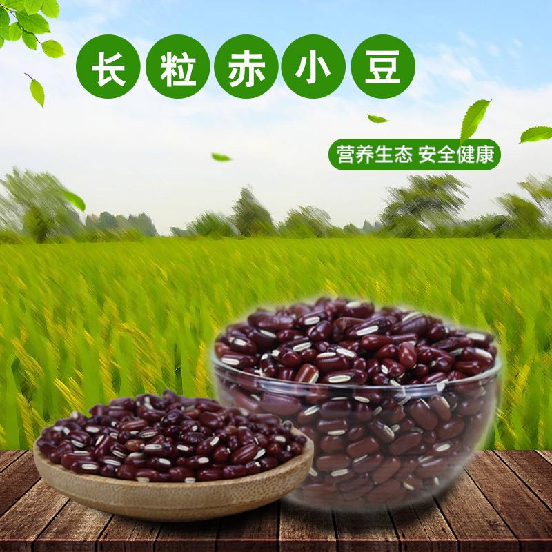 新货赤小豆(五斤装)正宗长粒赤豆农家自种小赤豆赤豆非红小豆