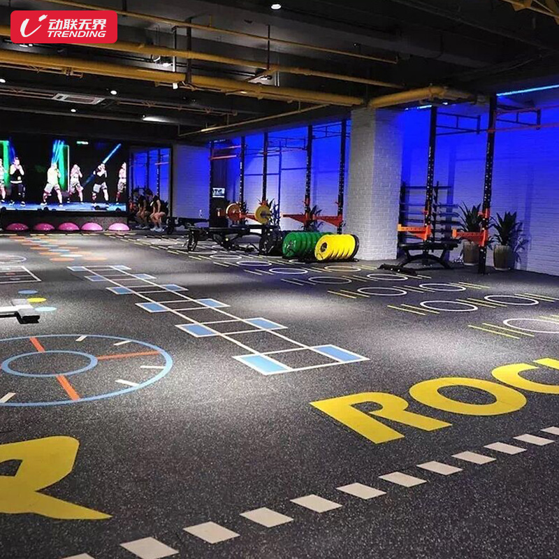 健身房地胶垫私教360定制图案少儿体适能训练防滑PVC塑胶运动地板