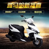 Yamaha 100 Qiao Ge Fu Ying Hei Ling Xun Tour Eagle Eagle Eagle still leading race after 125 rear trunk shelves tailstock