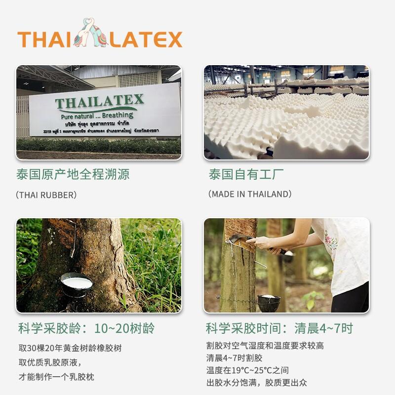 橡膠記憶枕護頸 泰國原裝進口天然乳膠枕頭 THAILATEX 泰拉緹