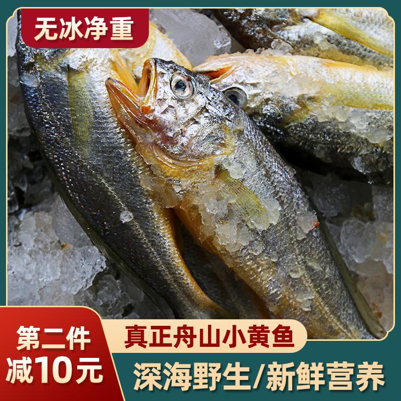 真正舟山小黄鱼 深海野生海鱼小黄花鱼 生鲜海鲜水产新鲜冷冻烧烤