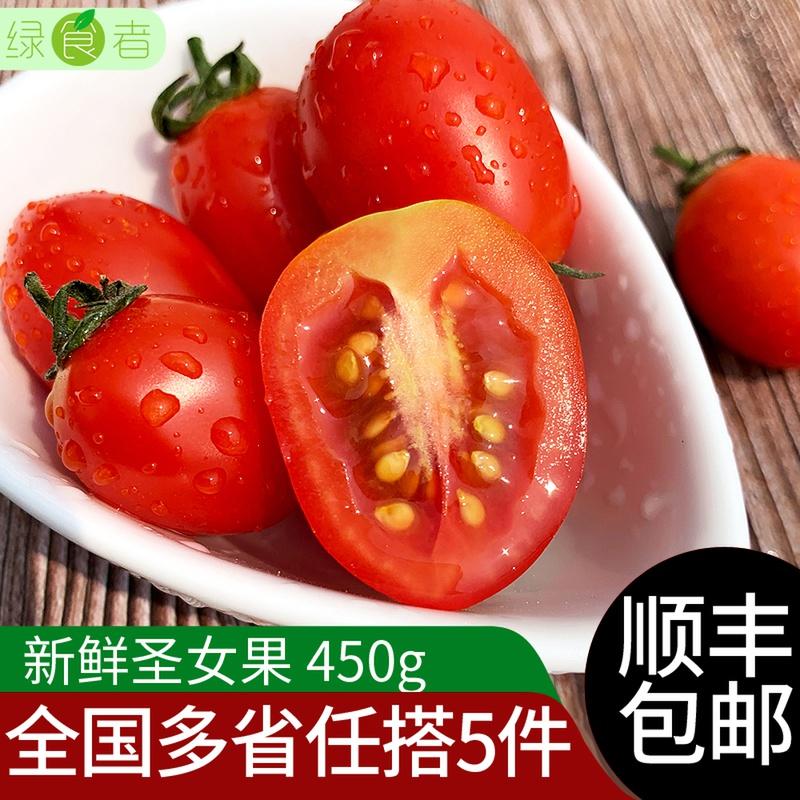 绿食者 圣女果450g 新鲜蔬菜水果当季迷你小西红柿酸甜可口小番茄