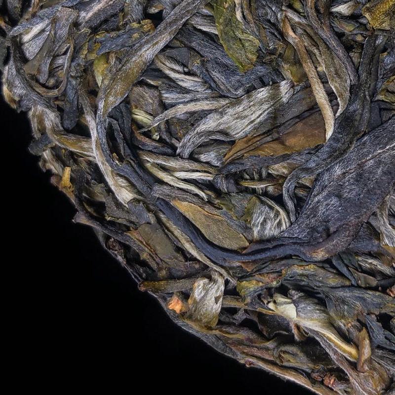年古树纯料茶叶 700 年头春 2020 古树普洱茶生茶 哆依树 凰馨古茶