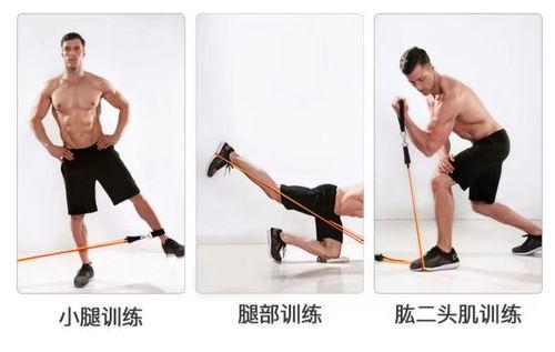 弹力绳健身家用拉力绳扩胸拉力器多功能家用胸肌力量训练绳阻力带