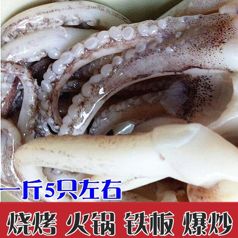 海鲜鱿鱼须新鲜鲜活鱿鱼爪鱿鱼足鱿鱼爪鱿鱼头鱿鱼冷冻串铁板烧烤