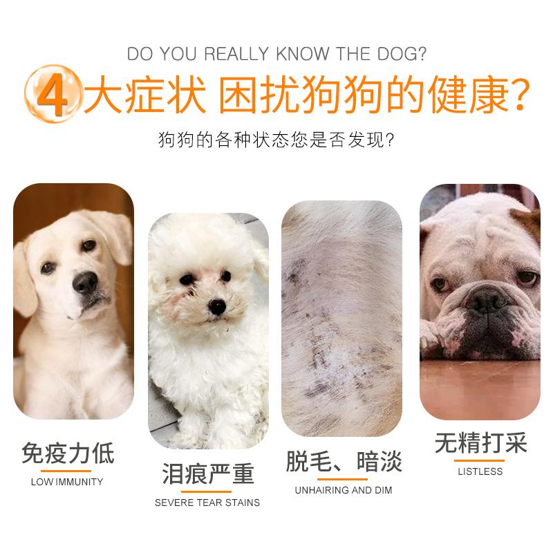 奥丁狗粮通用型40斤20kg金毛阿拉斯加拉布拉多大型犬成犬幼犬优惠券