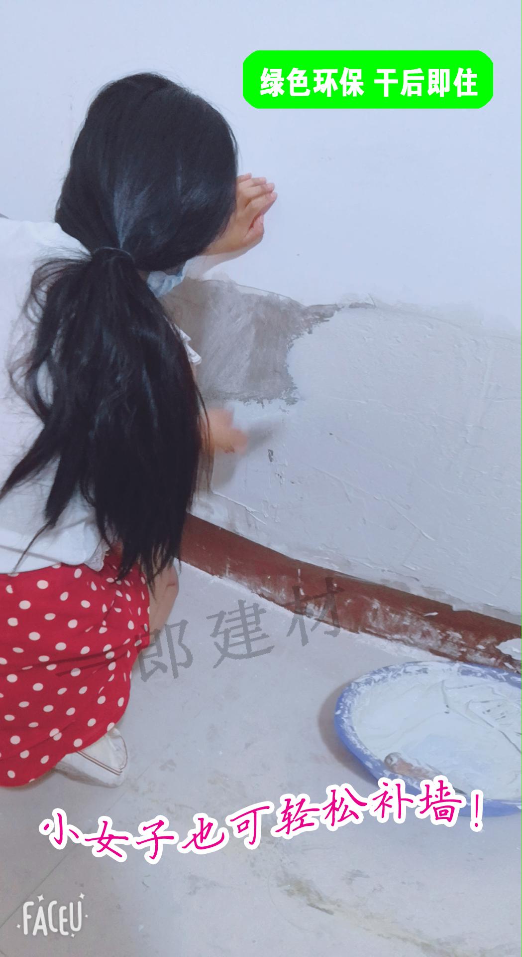 包邮425高标白水泥5斤2500g填缝补墙堵洞装地漏做水磨石工艺品