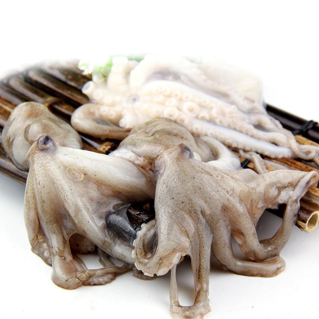 北京闪送 八爪鱼鲜活 长腿章鱼活体海鲜水产包杀好4-5只/500g
