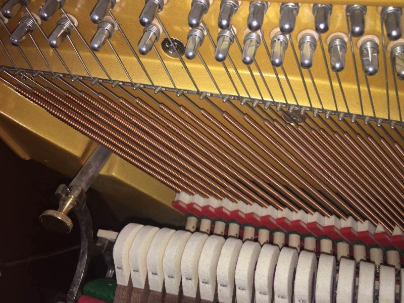 包邮 专业教学品质演奏 E125 德国卡普斯全新实木家用立式钢琴