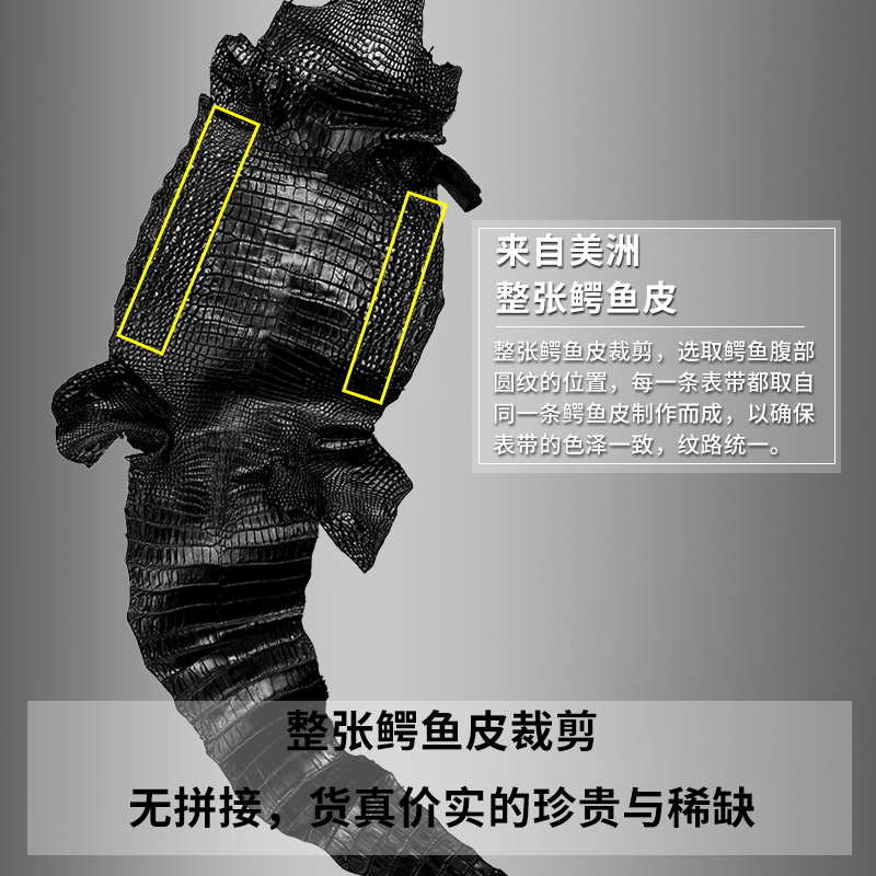 豪克鳄鱼皮手表带真皮男女蝴蝶扣代用dw天梭美度浪琴万国天王精工