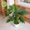 仿真植物小盆栽假花仿真花假盆景绿植客厅室内网吧装饰塑料花摆件