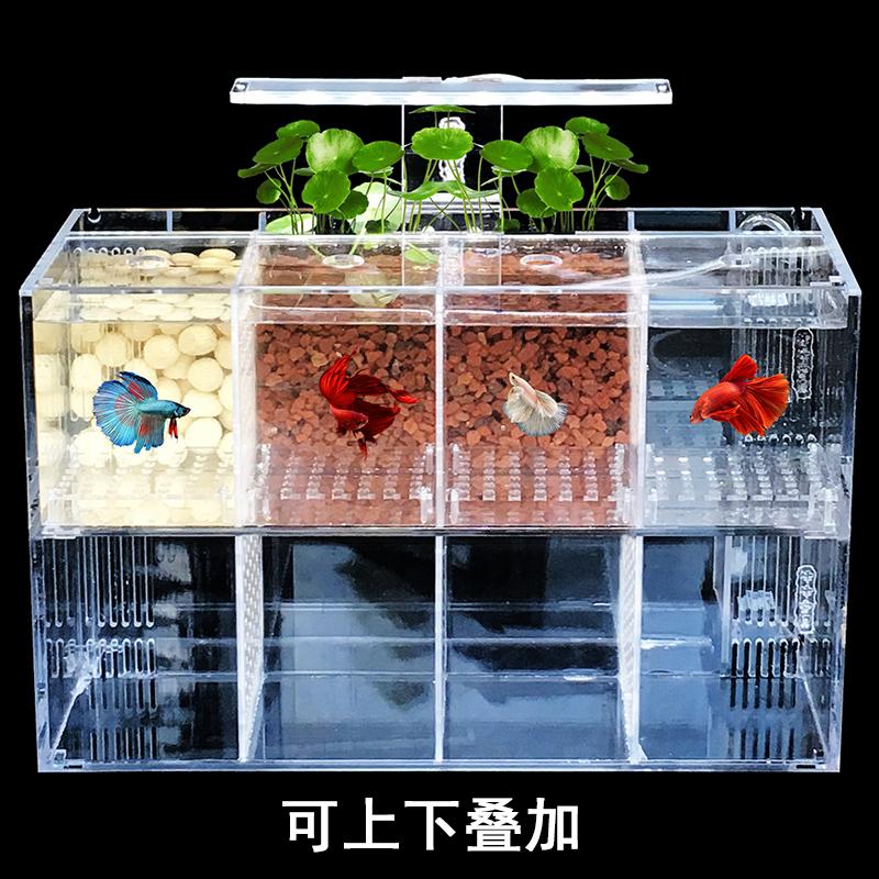 斗鱼缸孔雀鱼繁殖孵化隔离盒亚克力专用小组排缸活体桌面生态创意