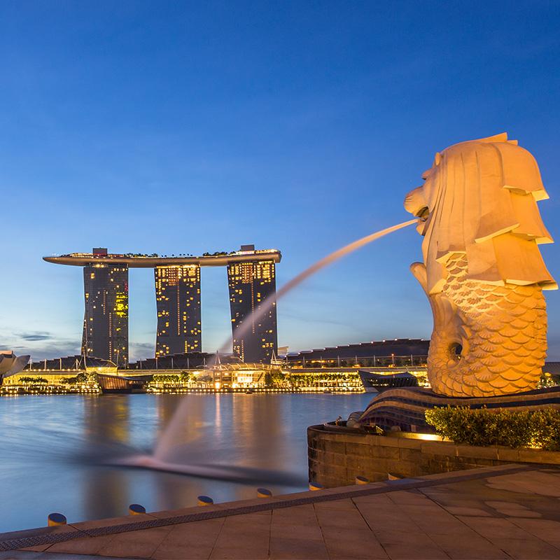 新马上网卡  高速流量手机三合一卡 4G 新马泰 新加坡电话卡