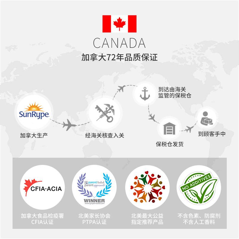 加拿大进口SunRype水果条儿童宝宝零食果丹皮24条婴儿一岁以上