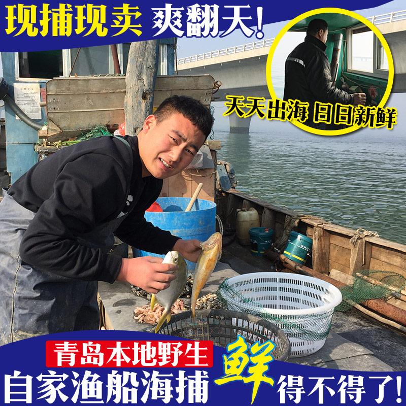 八爪鱼海鲜鲜活水产火锅食材即食小八爪鱼小章鱼爆头鲜活烧烤食材
