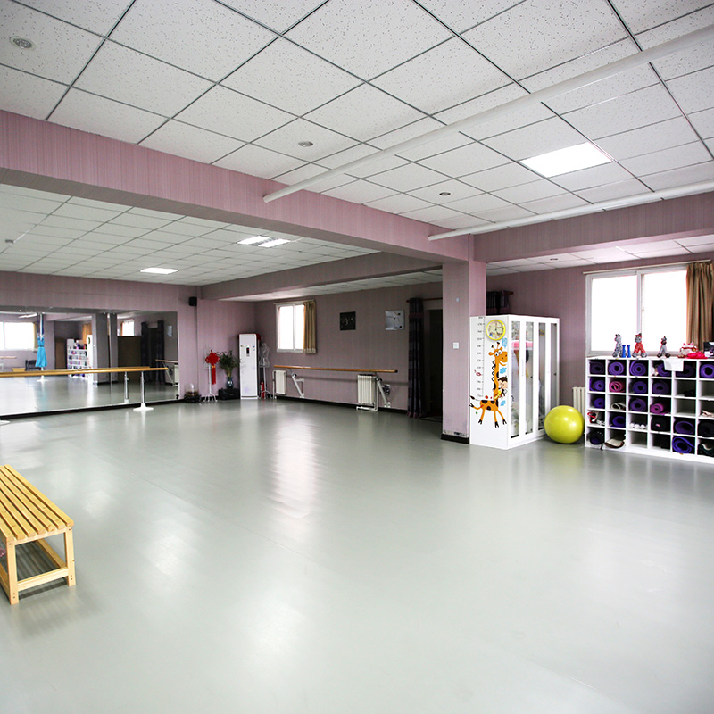 专业舞蹈地胶 舞蹈房舞蹈室教室幼儿园专用防滑运动PVC塑胶地板