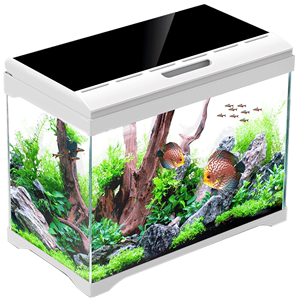 佳璐鱼缸客厅桌面小型迷你家用水族箱超白玻璃免换水生态金鱼缸