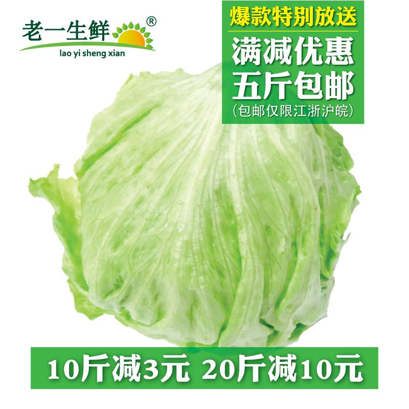 【老一生鲜】新鲜球生菜500g圆生菜沙拉菜西生菜沙拉蔬菜结球生菜