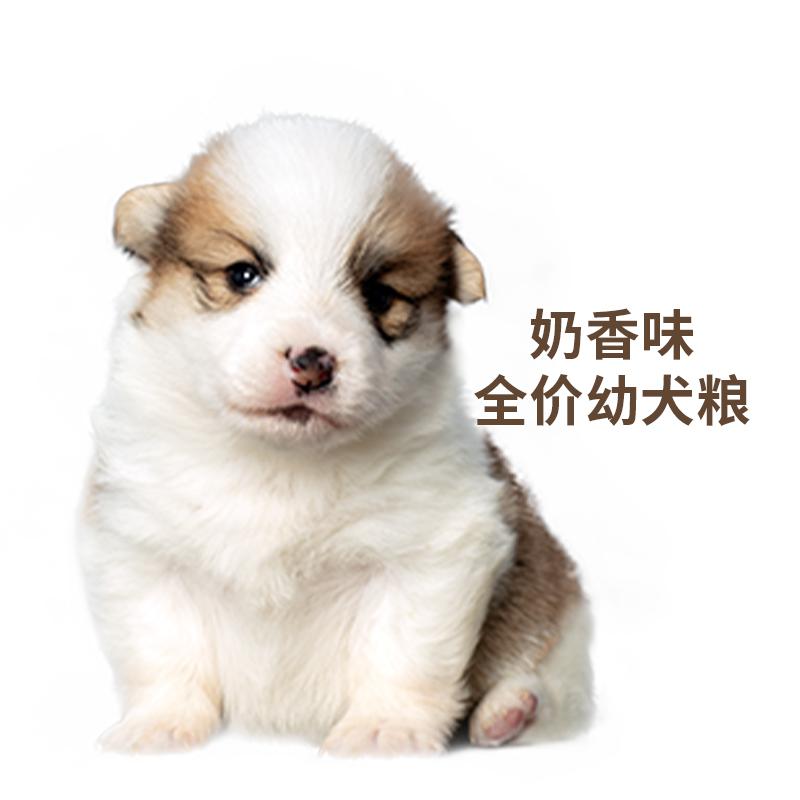 好之味幼犬狗粮诺瑞泰迪萨摩金毛幼犬通用型奶香味狗粮5kg包邮优惠券