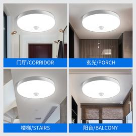 雷达人体声控感应吸顶灯led声光控家用楼道楼梯过道走廊红外220v