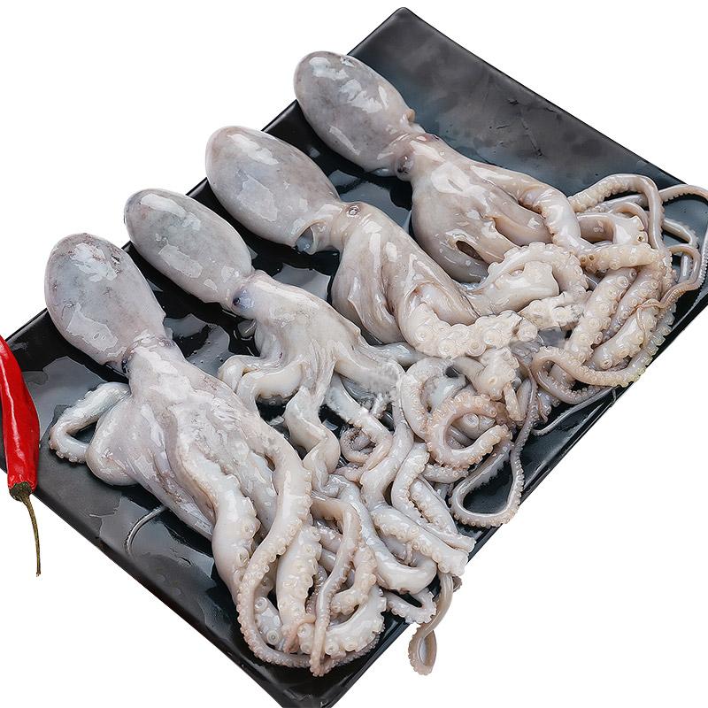 聚福鲜 鲜活冷冻长腿八爪鱼750g/袋 新鲜海鲜大章鱼八爪鱼小章鱼