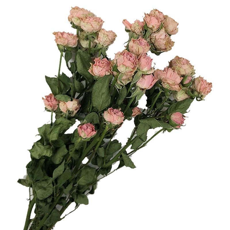 云南天然玫瑰干花花束蔷薇真花干花顶部装饰民宿风滴胶耳环素材