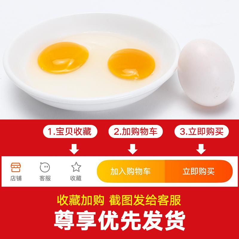 真邮牌鲜鸽子蛋特产20枚【送10枚】装土鸽蛋杂粮散养新鲜健康包邮