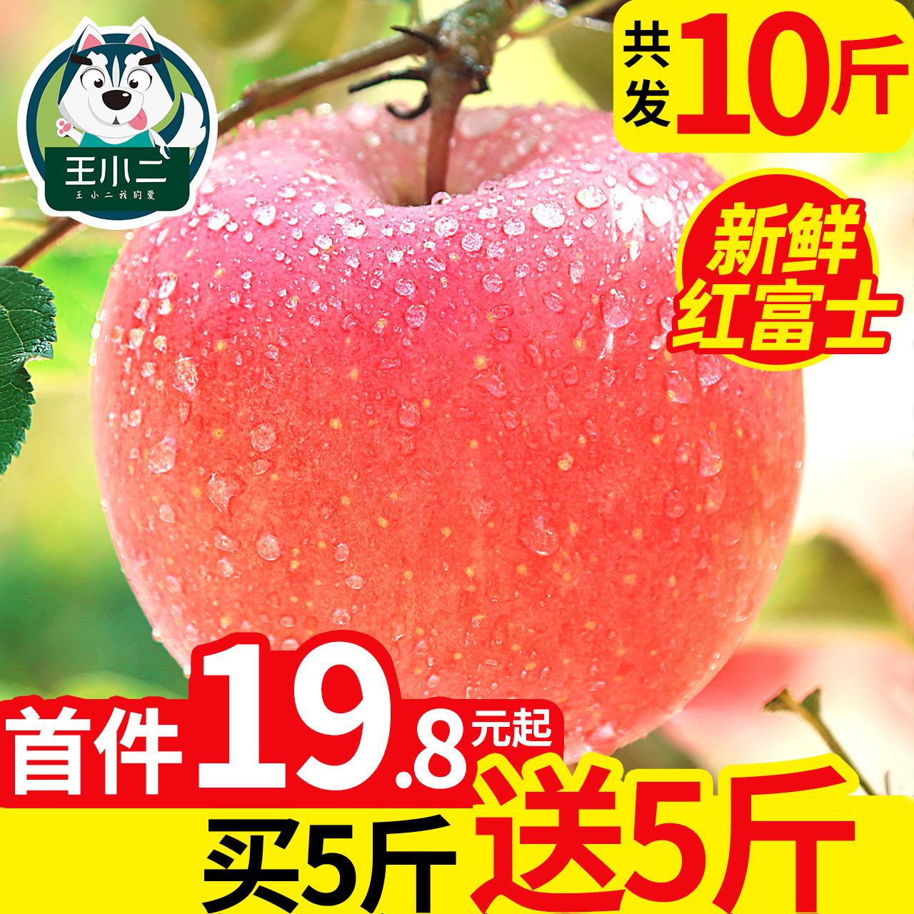 【爆款推荐】苹果水果新鲜10斤当季整箱陕西红富士应季脆甜糖心大果批发丑苹果,王小二苹果的果肉是酥脆香甜的