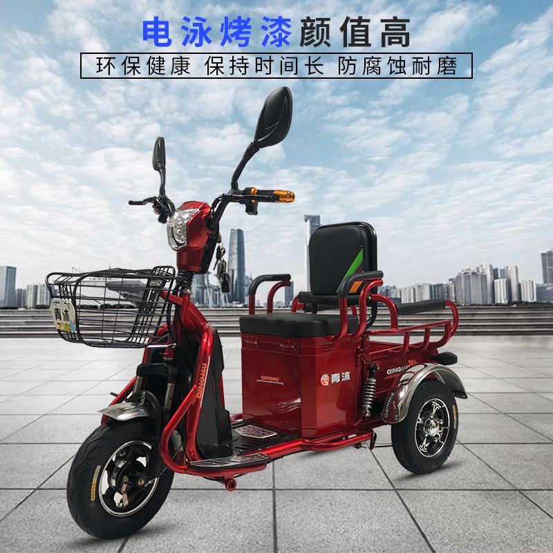 电动三轮车小型家用新款单人女士助力家用新款货车接送孩子代步车