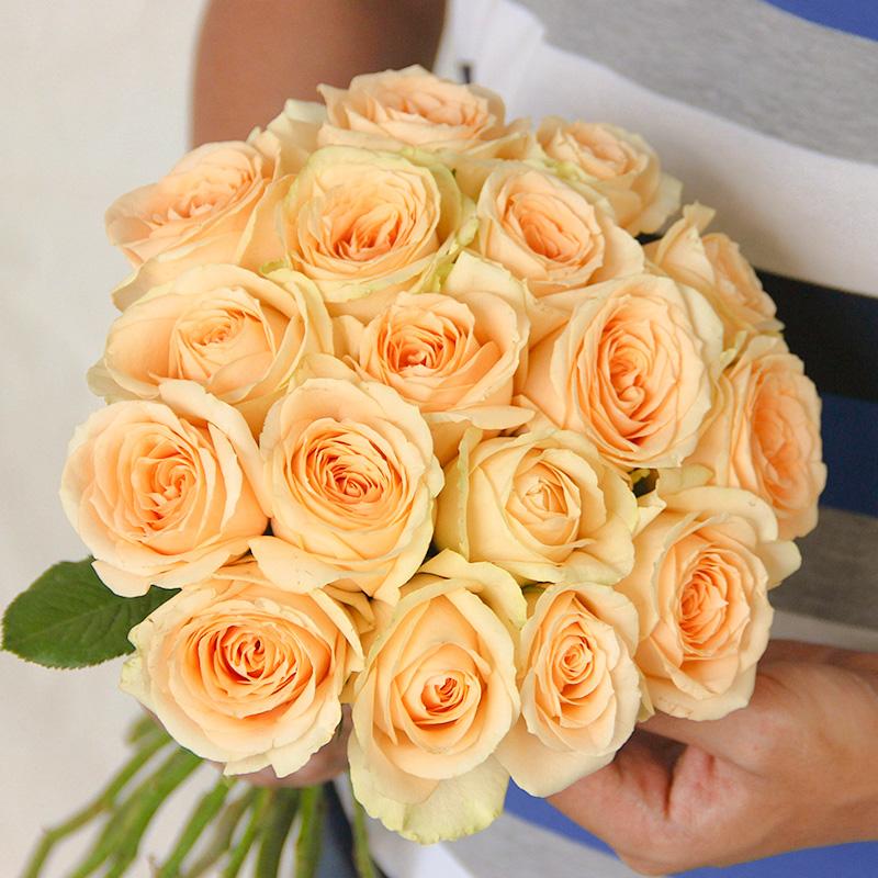 玫瑰花20支真花鲜花速递直批云南昆明基地直发家用办公室插花花束