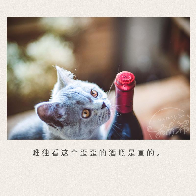 歪脖子红酒 芙华安赛伦干红葡萄酒 法国进口 楠希小馆