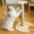 Sisal Cat Scratching Board Cat Scratching Post Claw Grinding Device